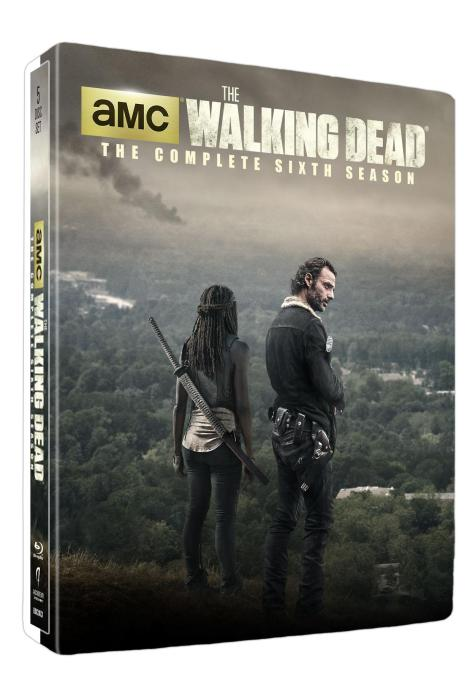 The.Walking.Dead.Season.6-Target.Exclusive.Steelbook.Blu-ray.Cover
