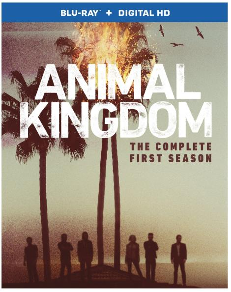 animal-kingdom-season-1-blu-ray-cover