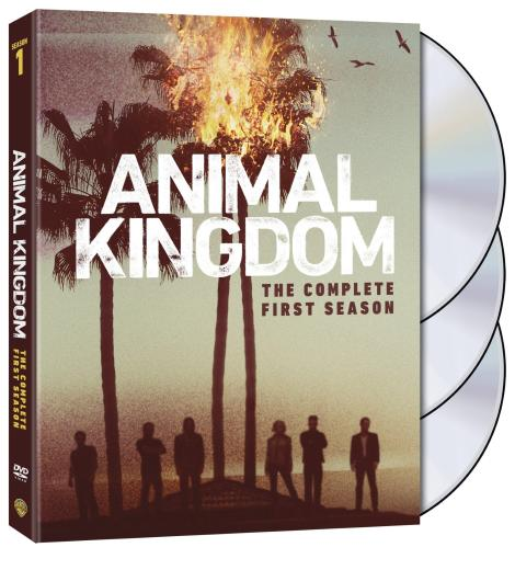animal-kingdom-season-1-dvd-cover-side