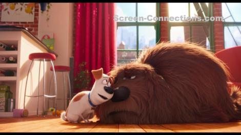 the-secret-life-of-pets-2d-blu-ray-image-01