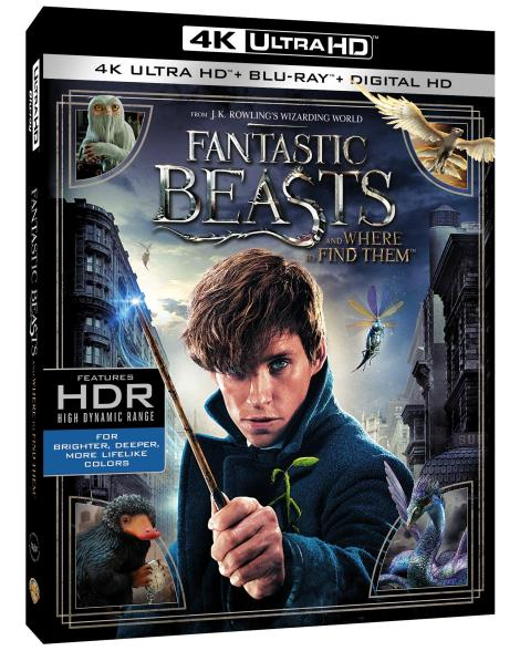 fantastic-beasts-and-where-to-find-them-4k-ultra-hd-cover-side