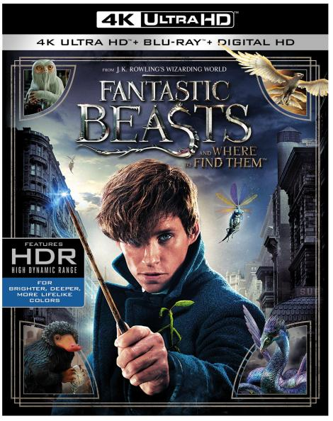 fantastic-beasts-and-where-to-find-them-4k-ultra-hd-cover